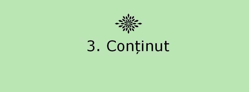 3.continut