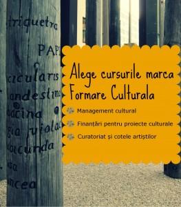 Formare Culturala_primavara 2014