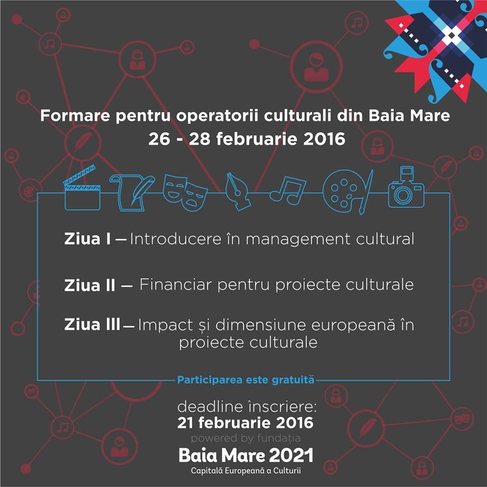 Modul intensiv de formare #BaiaMare2021
